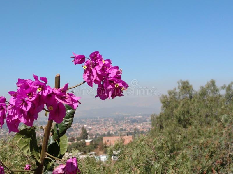 cochabamba imagem de stock