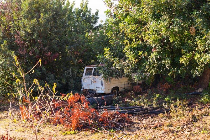 Coche abandonado desatendido en el bosque en la naturaleza foto de archivo libre de regalías
