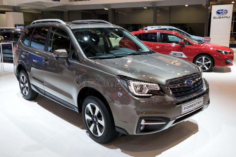 Coche 2018 de Compact SUV del silvicultor de Subaru imagenes de archivo
