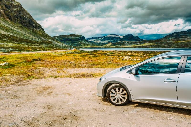 coche noruego