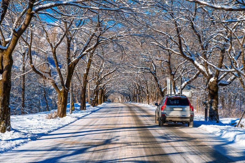Coche en el camino en el invierno, Seoraksan en Corea imagenes de archivo