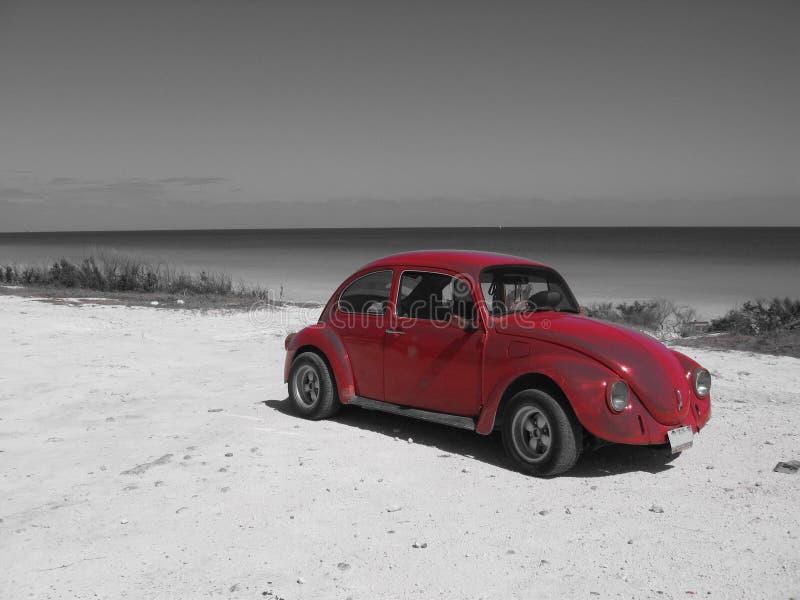 Coche rojo en paisaje negro y blanco foto de archivo