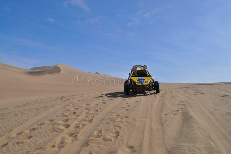 Cochecillo de duna en desierto imagenes de archivo