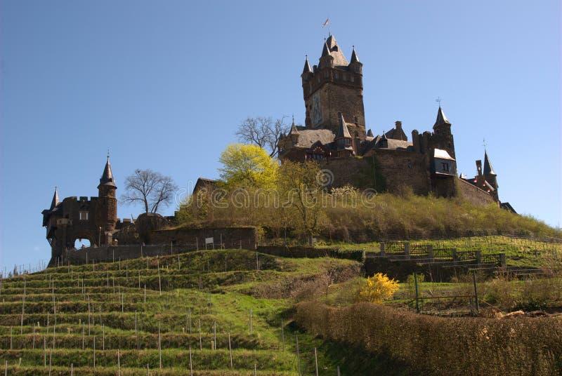 Cochem winnica w Niemcy i kasztel obraz royalty free