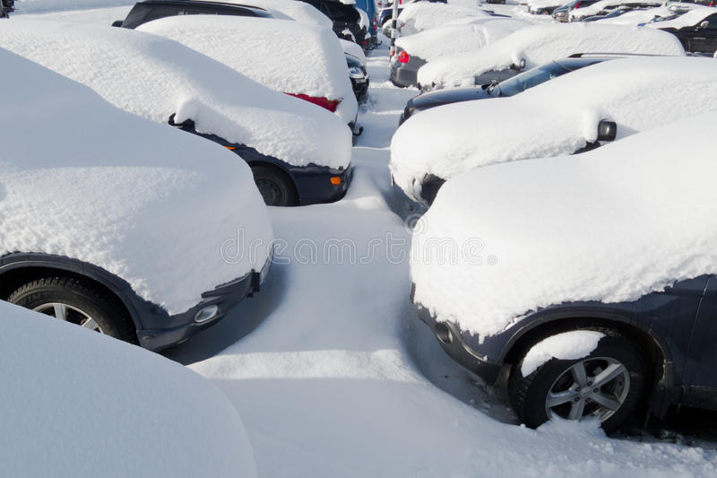 Coches cubiertos en nieve fotografía de archivo