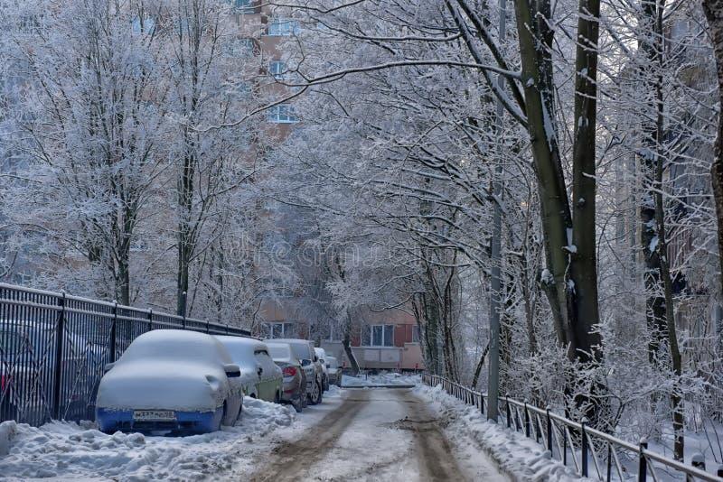 Coches y árboles nevados y el camino fotografía de archivo