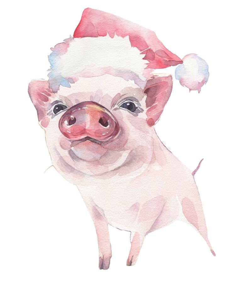 Cochinillo lindo en el sombrero de la Navidad, símbolo del Año Nuevo 2019 Ilustración de la acuarela ilustración del vector