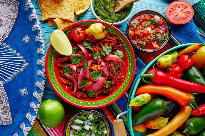 Cochinita Pibil墨西哥食物用红洋葱 免版税库存图片