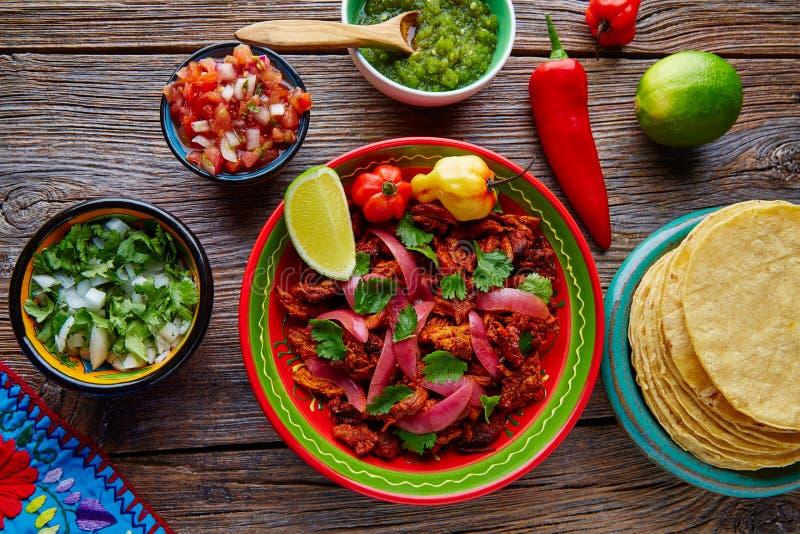 Cochinita Pibil墨西哥platillo食物用红洋葱 库存图片