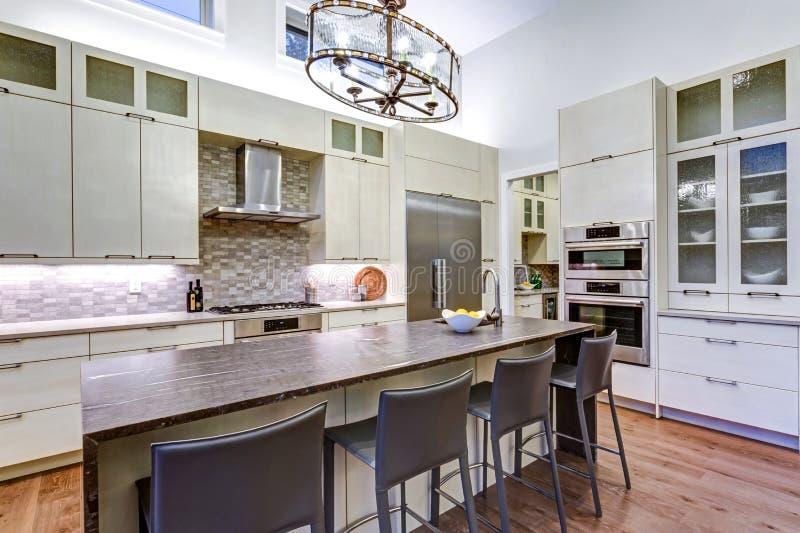 Cocina blanca contemporánea con los dispositivos de cocina de gama alta imágenes de archivo libres de regalías