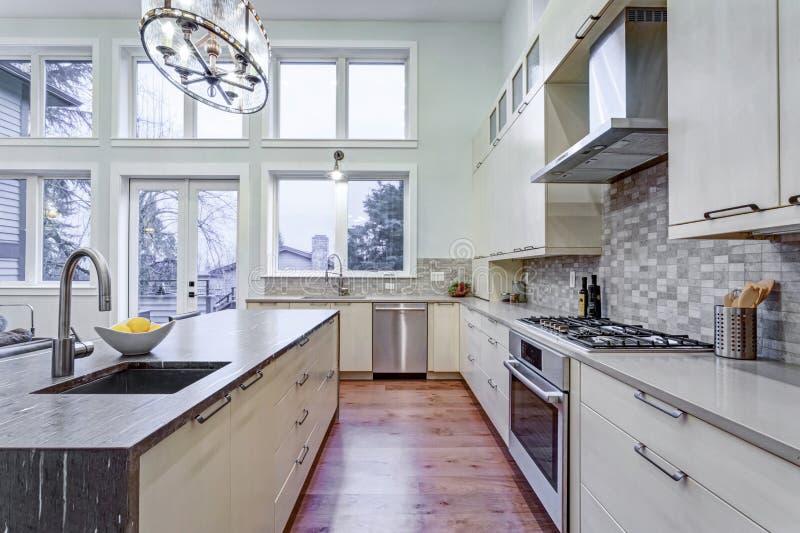 Cocina blanca contemporánea con los dispositivos de cocina de gama alta fotografía de archivo