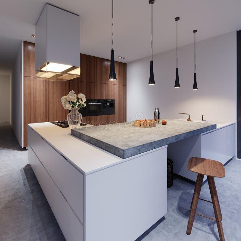 Cocina blanca escandinava en la igualación de la luz con la decoración, diseño interior minimalistic libre illustration