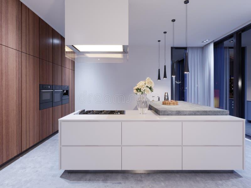 Cocina blanca escandinava en la igualación de la luz con la decoración, diseño interior minimalistic stock de ilustración