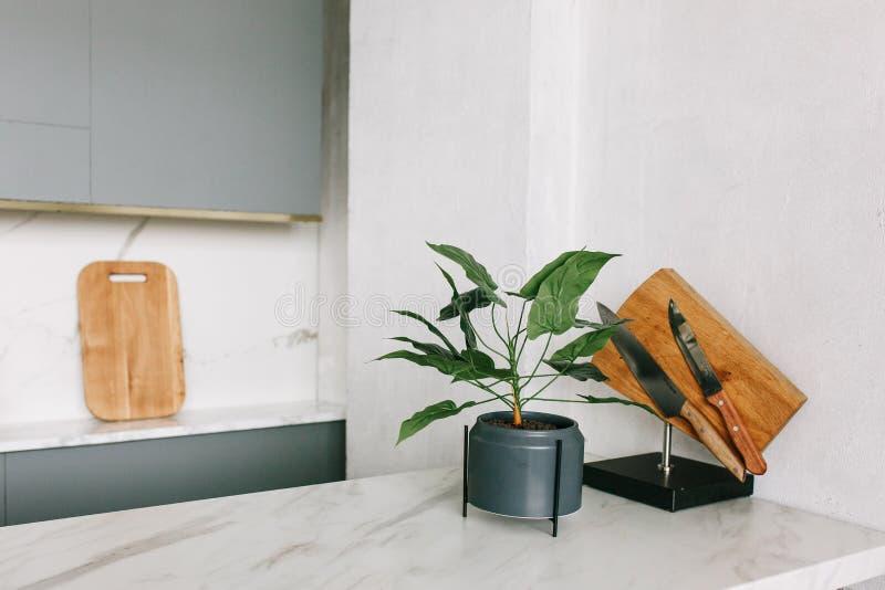 Cocina de mármol blanca moderna en nuevo estudio movido completamente Estante decorativo de la planta verde y del cuchillo imágenes de archivo libres de regalías