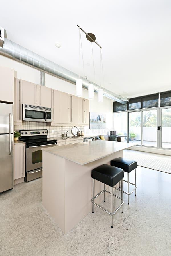 Cocina y sala de estar modernas de la propiedad horizontal foto de archivo libre de regalías