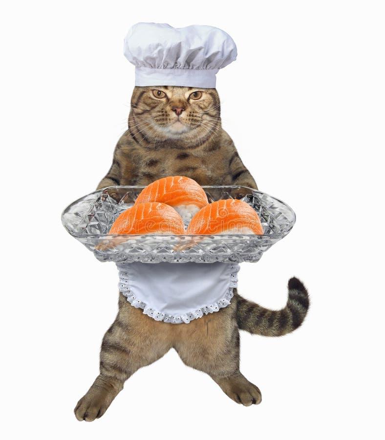 Cocinero del gato con la bandeja del sushi foto de archivo libre de regalías