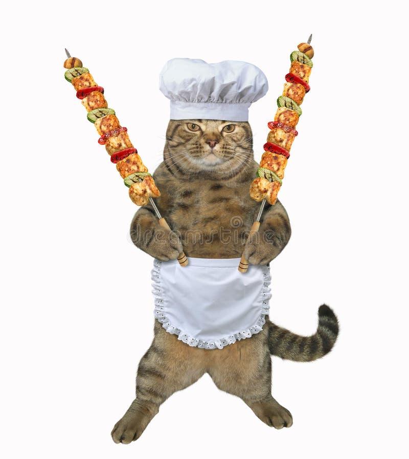 Cocinero del gato con la carne asada a la parrilla en los pinchos imagen de archivo