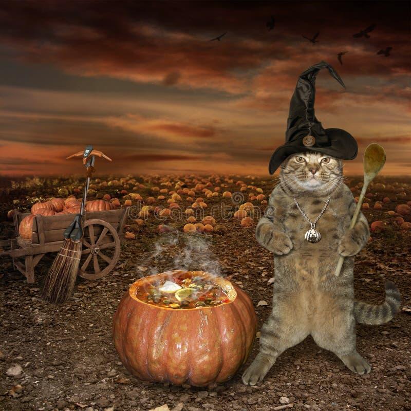 Cocinero del gato de Halloween imagenes de archivo