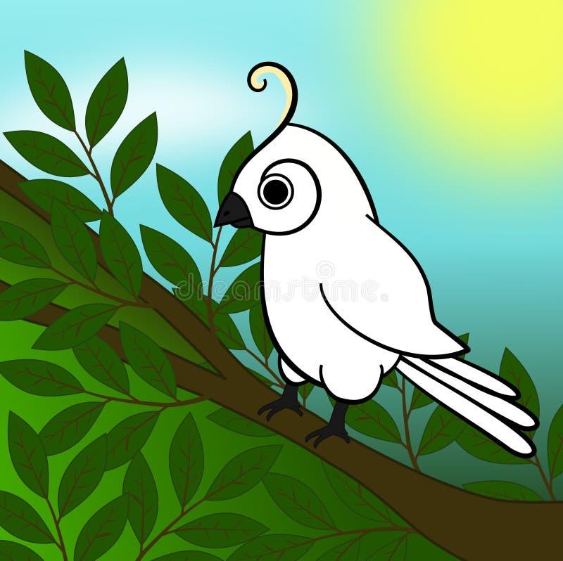 Cockatoo libre illustration
