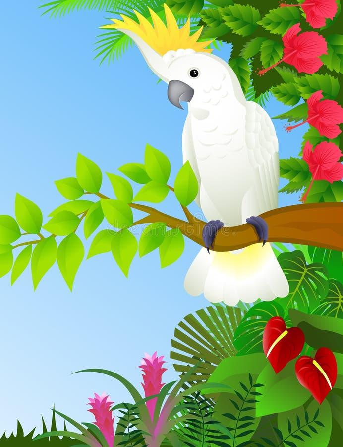 Cockatoo Nella Foresta Fotografie Stock Libere da Diritti