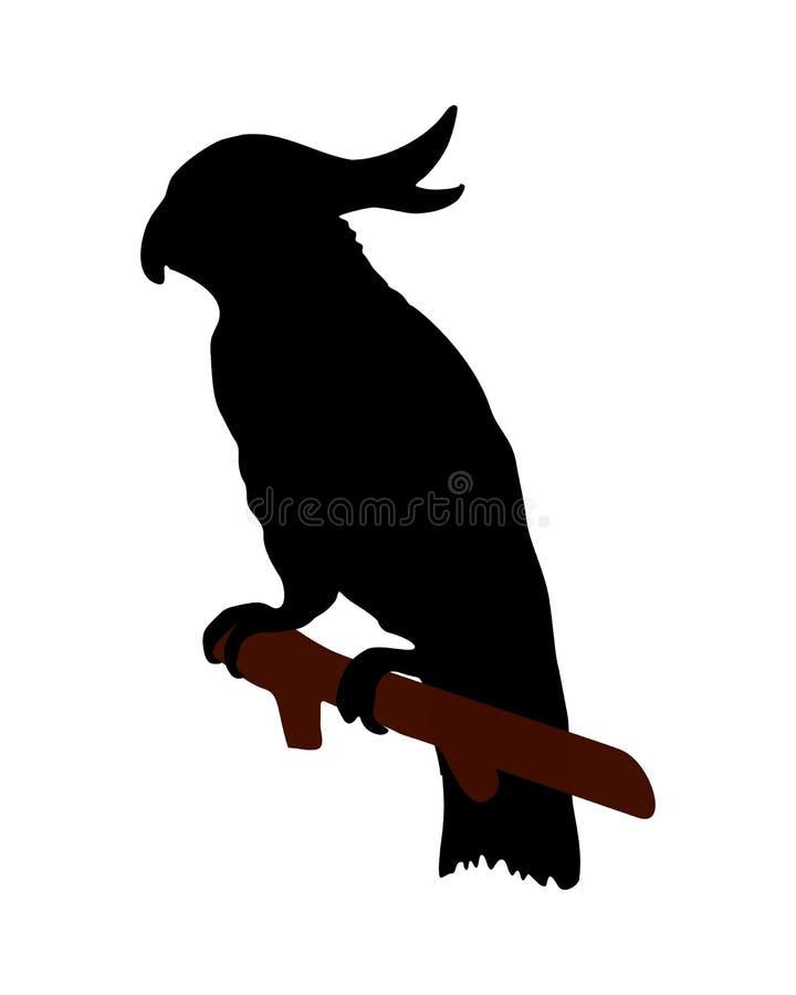 Cockatoo no branco ilustração royalty free