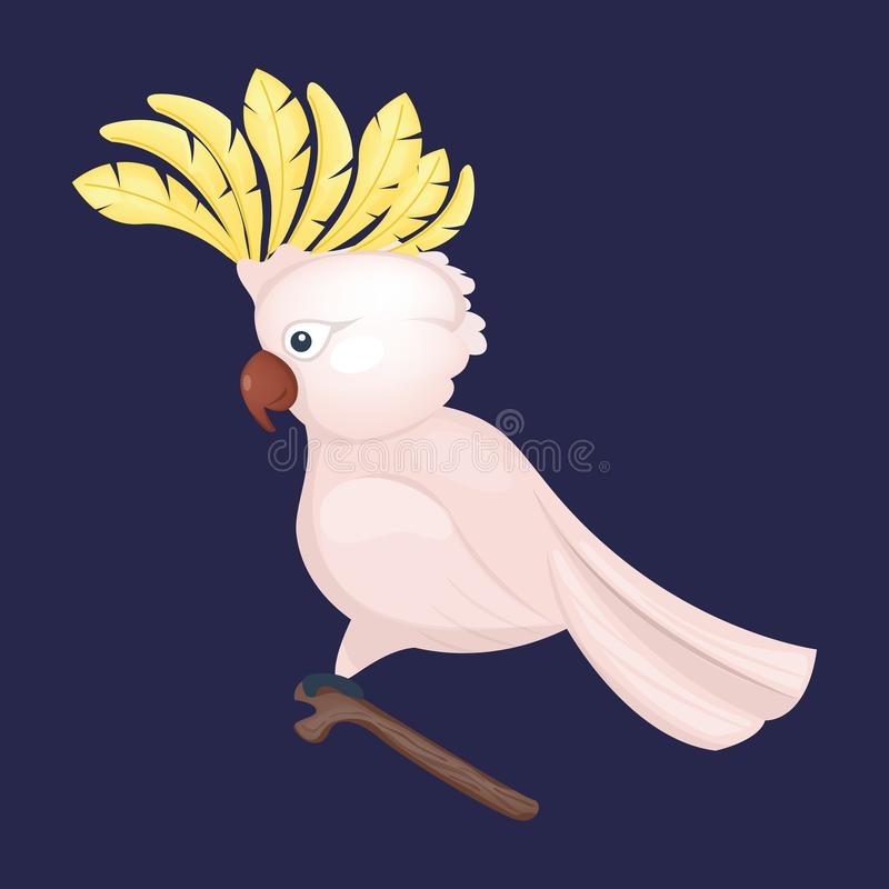 Cartoon Tropical Cockatoo Parrot Wild Animal Bird Vector