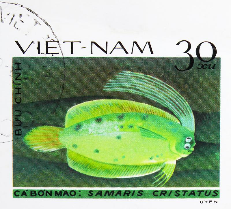 Cockatoo Righteye Flounder (Samaris cristatus), Fish - Soles / Flatfish serie, circa 1982. MOSCOW, RUSSIA - AUGUST 4, 2019: Postage stamp printed in Vietnam royalty free stock photo