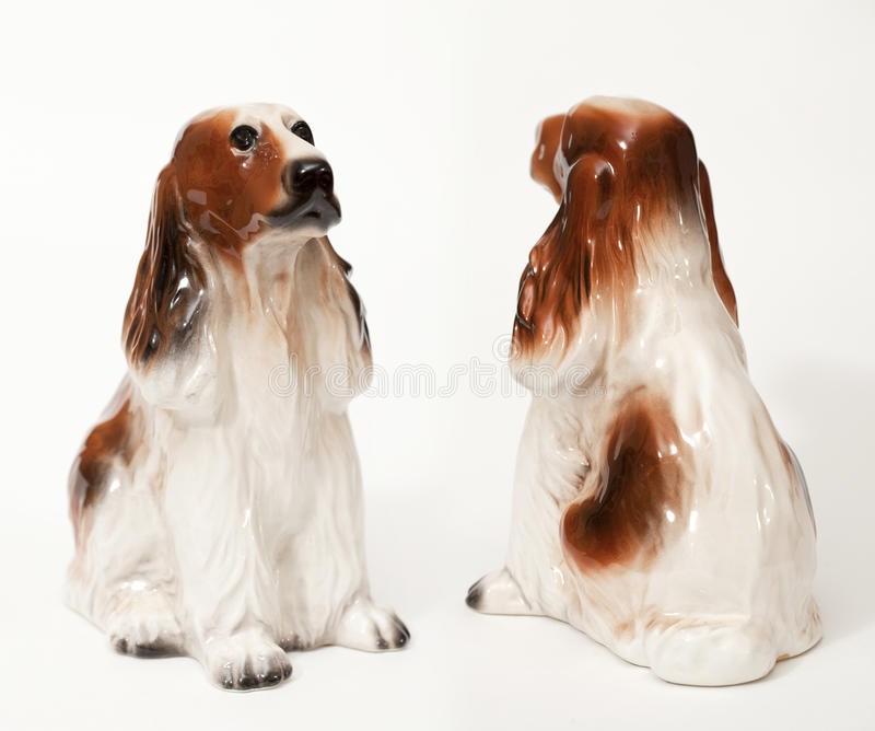 Cocker spaniel stockfotografie