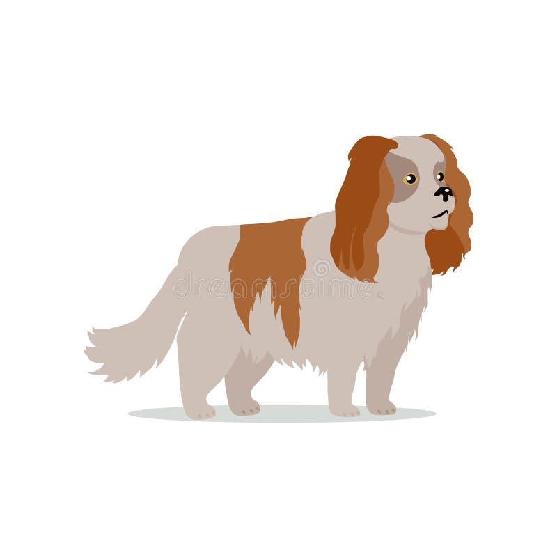 Cocker Spaniel psa trakenu projekta Płaska ilustracja ilustracja wektor