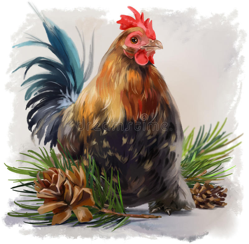 Cockerel watercolor painting. Young Cockerel sits in the branches of a Christmas tree watercolor painting vector illustration