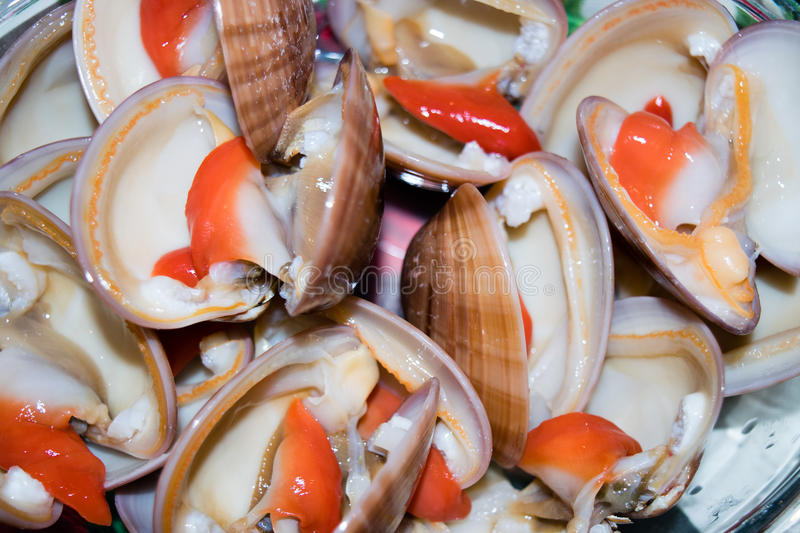 cockles obrazy royalty free
