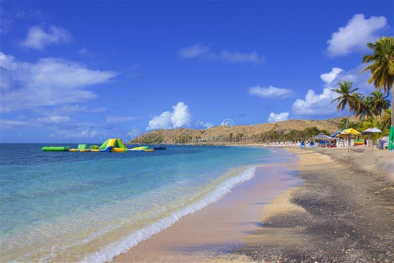 Cockleshellstrand in St. Kitts, Karibisches Meer stockbild