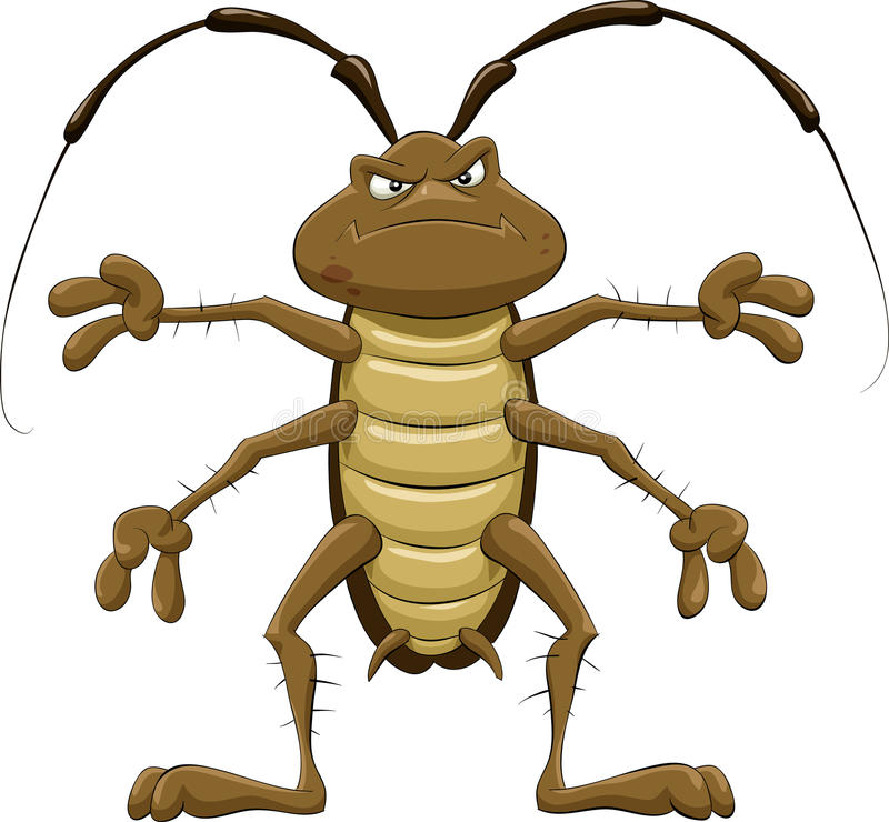 Free Cockroach Royalty Free Stock Images - 15995819