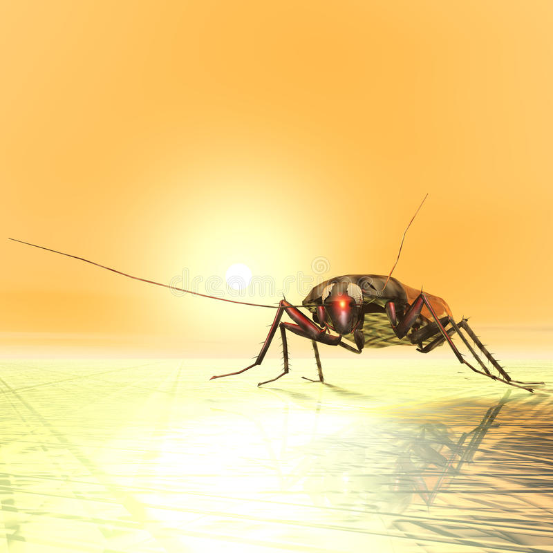 Free Cockroach Stock Photography - 51550252