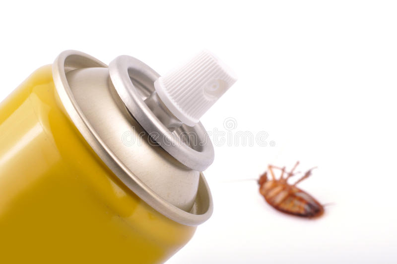 Cockroach sprayer stock image