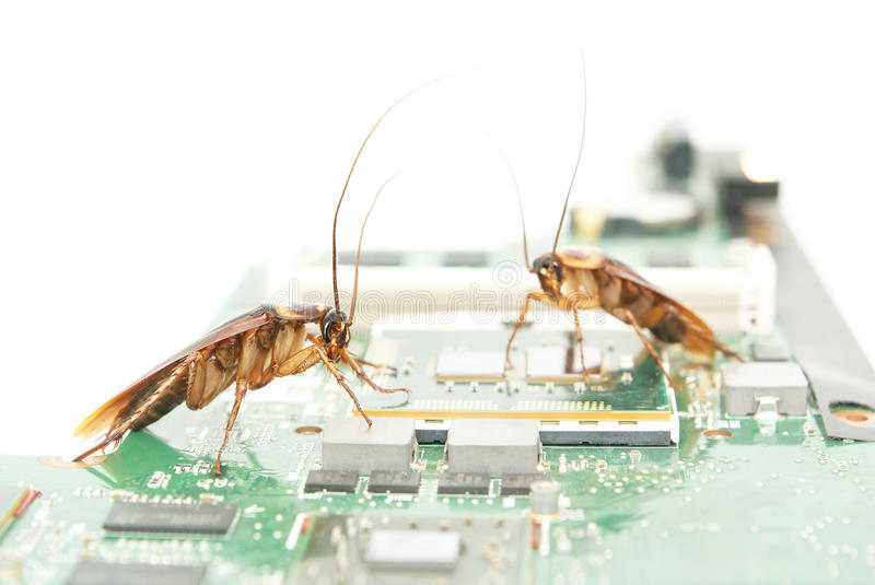 Cockroaches climbing on circuit board royalty free stock photos