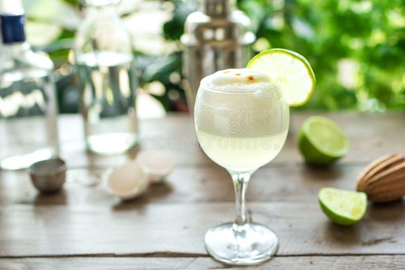 Cocktail ácido de Pisco fotografia de stock