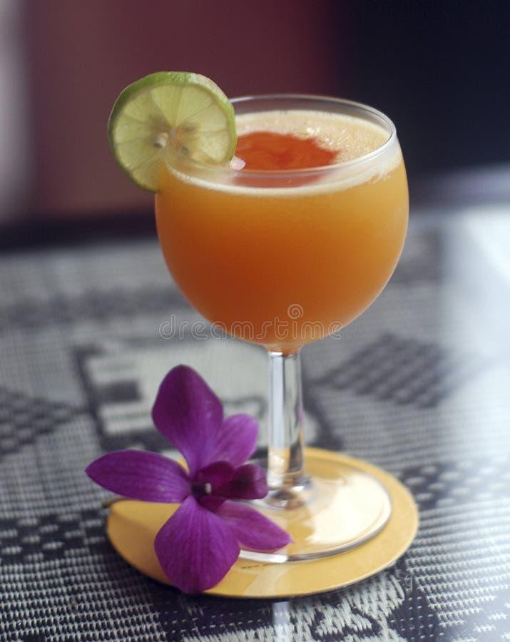 Cocktail-1 photo libre de droits
