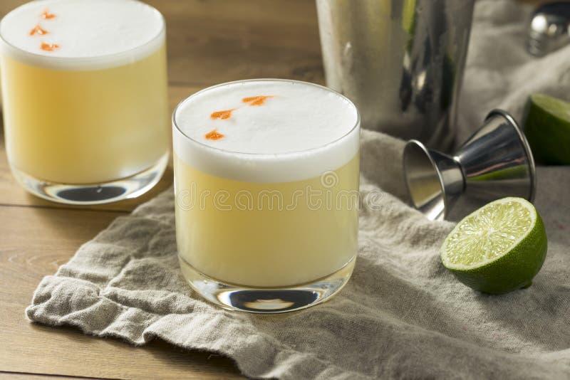 Cocktail aigre fait maison de Pisco photos stock