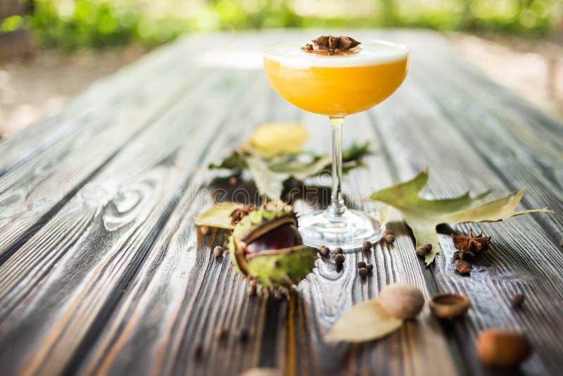 Cocktail alcoólico alaranjado imagem de stock royalty free