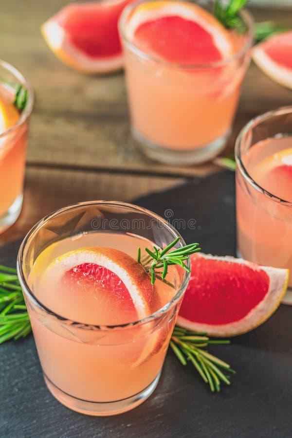 Cocktail alcoólico cor-de-rosa fresco com toranja, gelo e alecrins imagem de stock