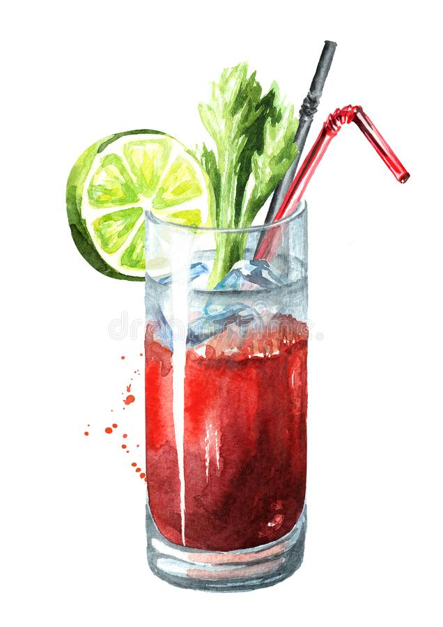 Cocktail with alcohol Bloody Mary with celery and lime. Watercolor hand drawn illustration isolated on white background. Cocktail with alcohol Bloody Mary with royalty free illustration