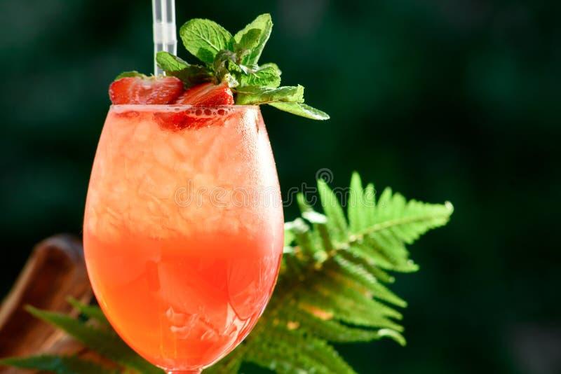 Cocktail arancio di rinfresco di estate con ghiaccio e la menta sui precedenti delle foglie verdi spazio Fine in su immagine stock libera da diritti