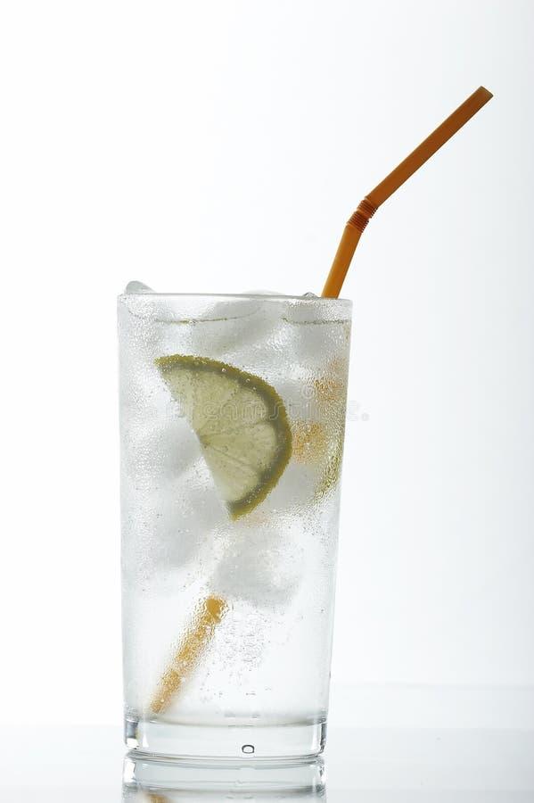 Cocktail avec le citron images libres de droits