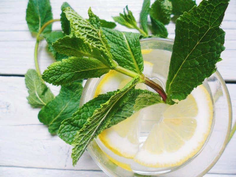 cocktail avec le citron et les feuilles en bon état sur un fond blanc photo libre de droits