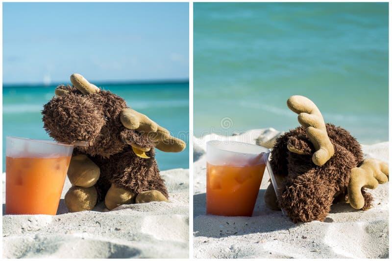 Cocktail bebendo dos alces na praia 2 fotografia de stock royalty free