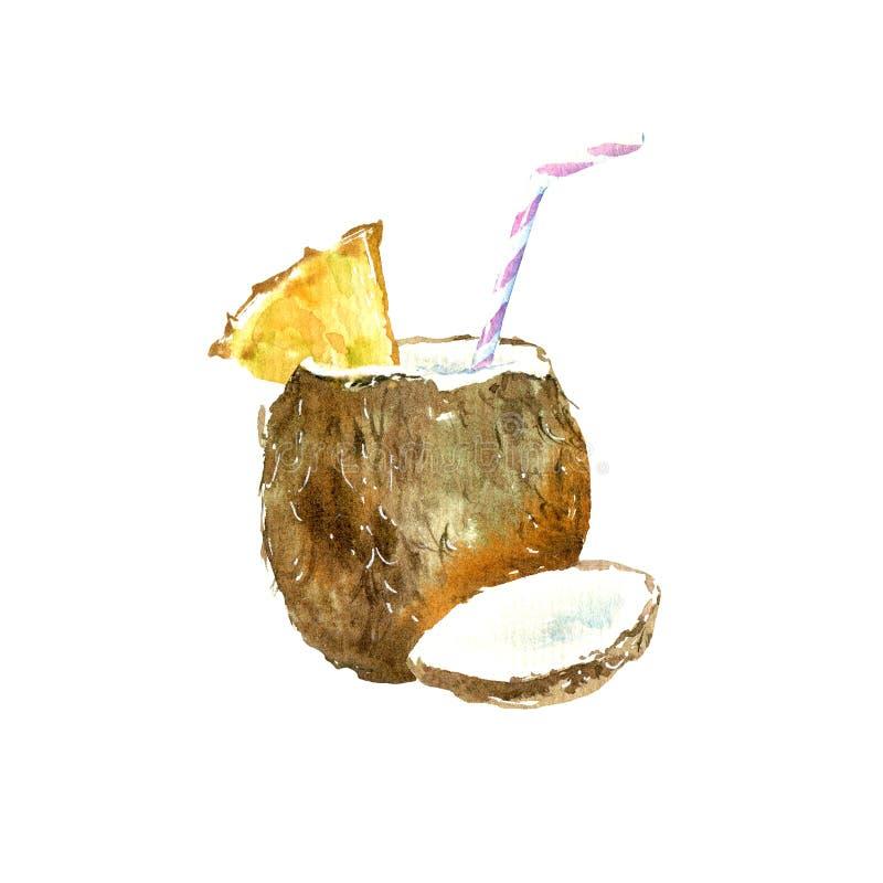 Cocktail in coconut. Tropical fruit sketch. vector illustration