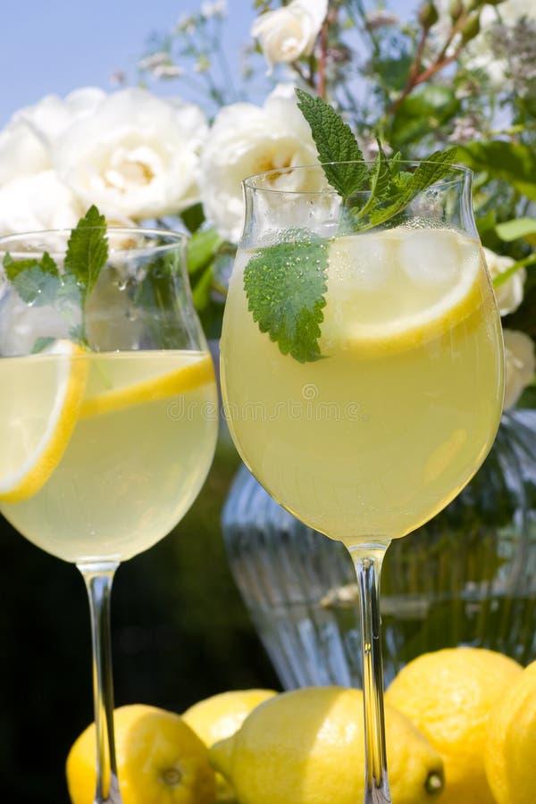 Cocktail com as rosas no fundo fotos de stock