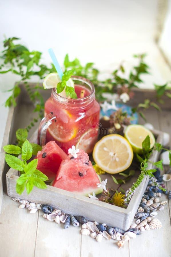 Cocktail com melancia e cal Hortelã e citrino Bebidas frescas Dieta e vitamina imagens de stock royalty free
