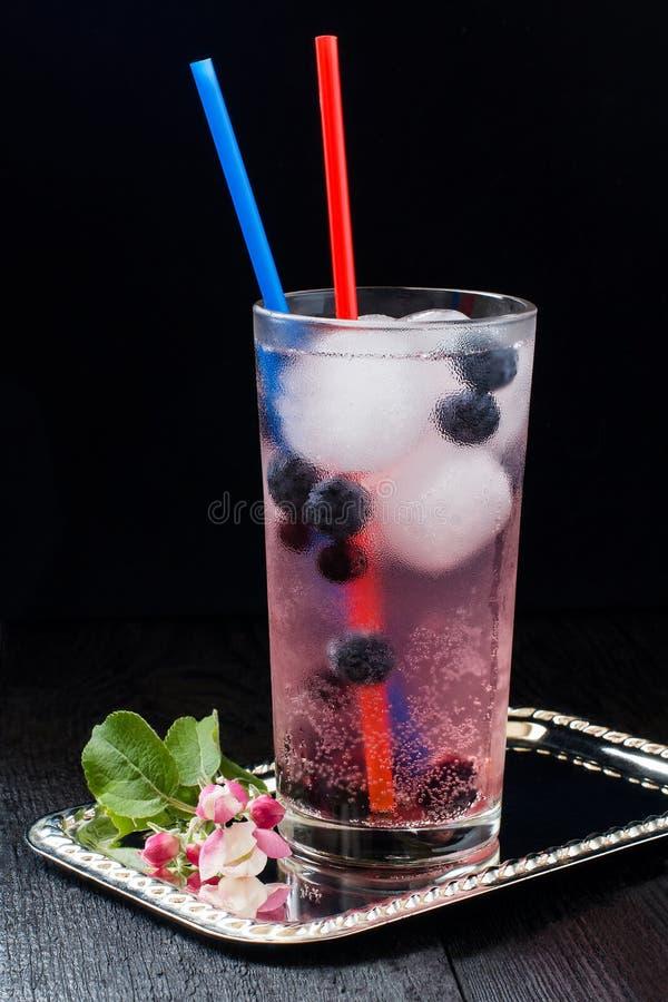 Cocktail com mirtilo, o corinto preto e o gelo imagens de stock